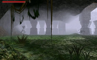 Forest Cave.jpg